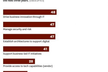 IT leaders Skills